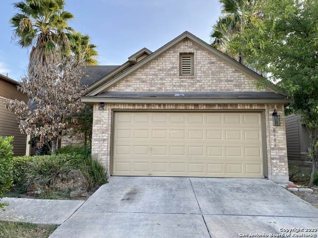 8606 Spoonbill Ct, San Antonio, TX 78245 (MLS #1489596) :: Carolina Garcia Real Estate Group