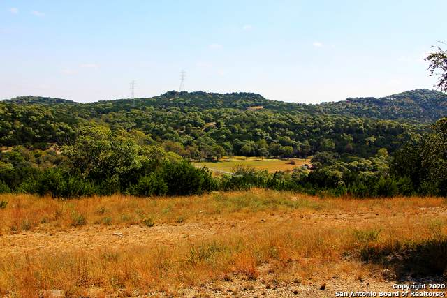 105 Lost Valley, Boerne, TX 78006 (MLS #1489618) :: 2Halls Property Team | Berkshire Hathaway HomeServices PenFed Realty