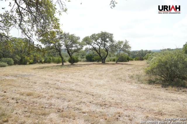 24.69 ACRES High Bluff Rd - Photo 1