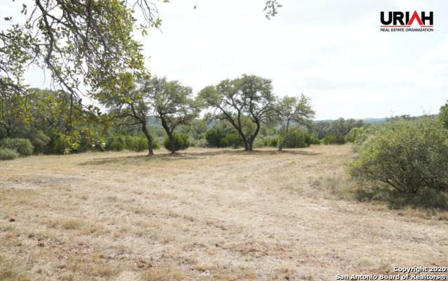 24.69 ACRES High Bluff Rd, San Antonio, TX 78023 (MLS #1490061) :: Alexis Weigand Real Estate Group