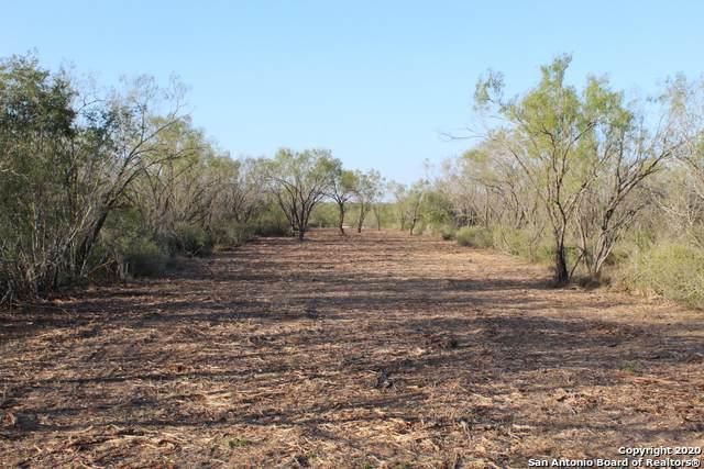 1133 Lilly Bear Lane - Tract 12, Moore, TX 78057 (MLS #1490450) :: Carolina Garcia Real Estate Group