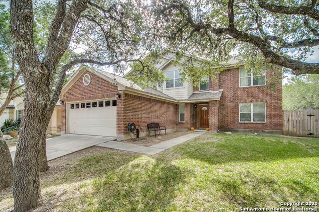946 Cheyenne Crk, San Antonio, TX 78258 (MLS #1490626) :: The Lugo Group