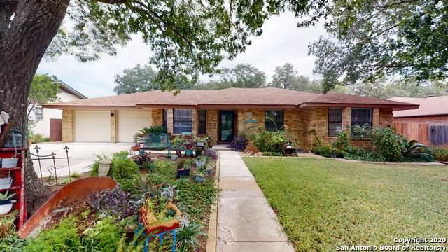 19702 Encino Brook St, San Antonio, TX 78259 (MLS #1490639) :: ForSaleSanAntonioHomes.com