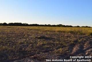 000 Sanctuary Ln, Somerset, TX 78069 (MLS #1490729) :: The Gradiz Group