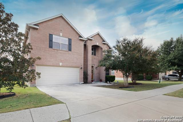 224 Springtree Trail, Cibolo, TX 78108 (MLS #1490863) :: Tom White Group