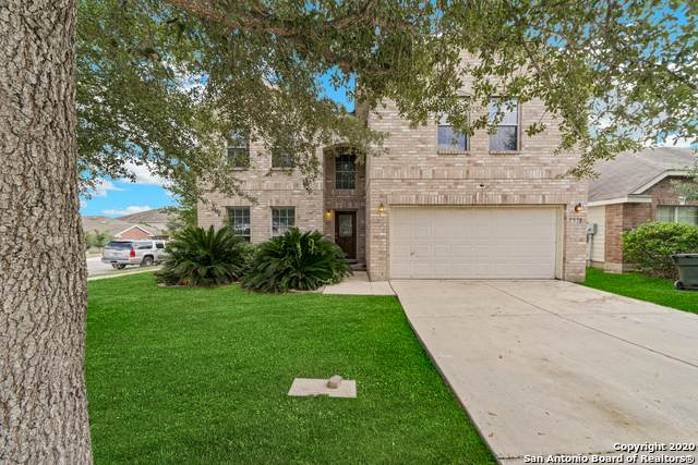 133 Farmview, Cibolo, TX 78108 (MLS #1490903) :: Tom White Group