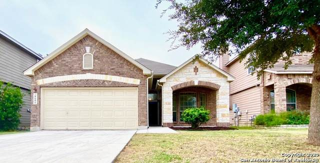 8606 Finlandia Gap, San Antonio, TX 78251 (MLS #1490995) :: The Lugo Group