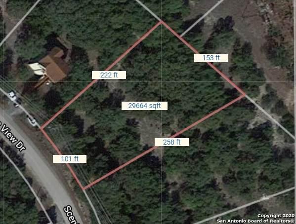 1267 Scenic View Dr, Canyon Lake, TX 78133 (MLS #1491041) :: Carolina Garcia Real Estate Group