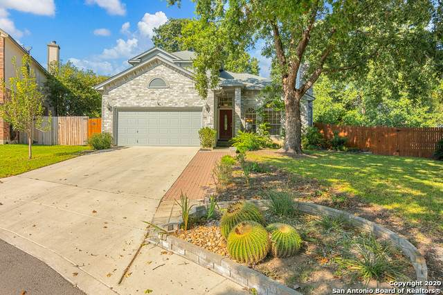 15110 Spring Glen, San Antonio, TX 78247 (MLS #1491247) :: The Castillo Group