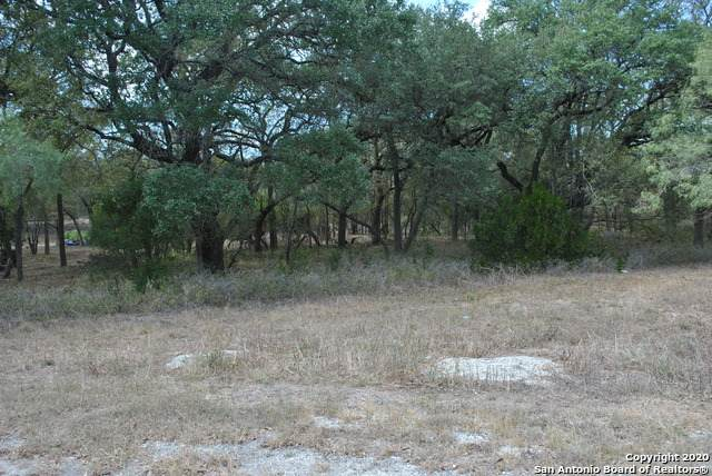 430 County Road 3828, San Antonio, TX 78253 (MLS #1491324) :: Alexis Weigand Real Estate Group