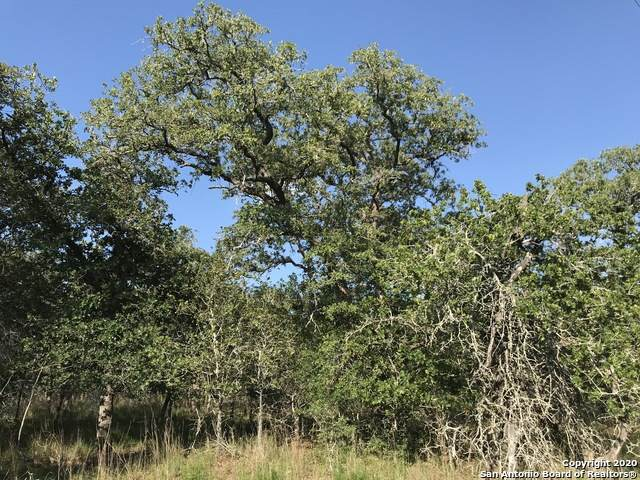 00000 Turkey Tree Trail, Seguin, TX 78155 (MLS #1491328) :: Santos and Sandberg
