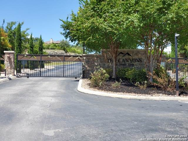 000 Doherty Springs, San Antonio, TX 78255 (MLS #1491381) :: The Lugo Group