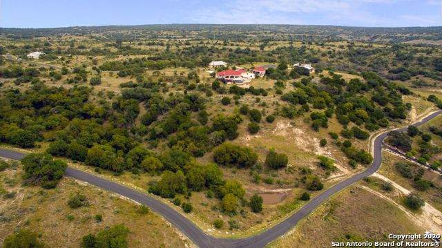 425 Settlers Way, Comfort, TX 78013 (MLS #1491434) :: Real Estate by Design