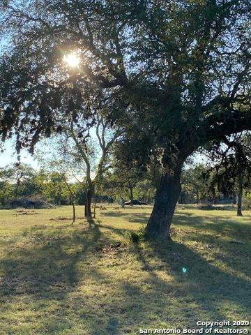 671 Lakeshore Ln, Bandera, TX 78003 (MLS #1491770) :: 2Halls Property Team | Berkshire Hathaway HomeServices PenFed Realty