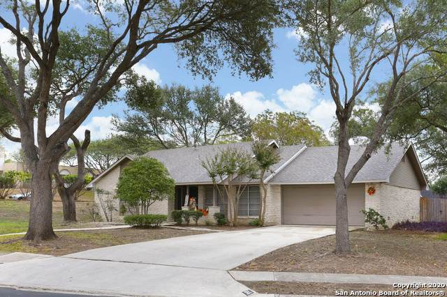 6146 Royal Pt, San Antonio, TX 78239 (MLS #1492192) :: Santos and Sandberg