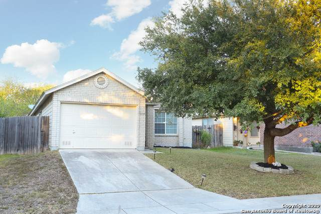 11119 Bushwack Pass, San Antonio, TX 78254 (MLS #1492324) :: Williams Realty & Ranches, LLC