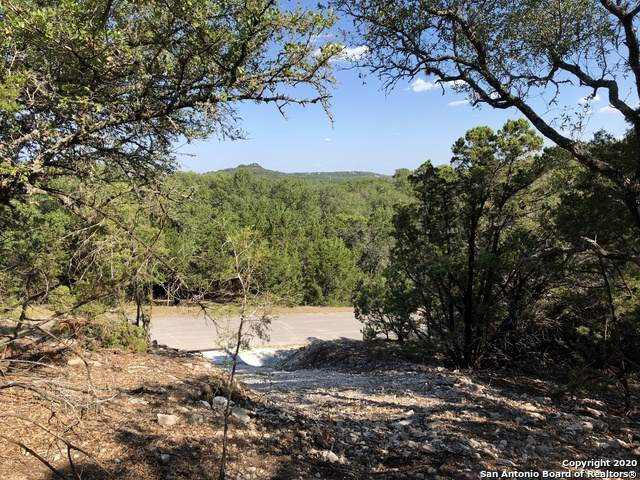 202 Assiniboia Dr, Canyon Lake, TX 78133 (MLS #1492342) :: Williams Realty & Ranches, LLC