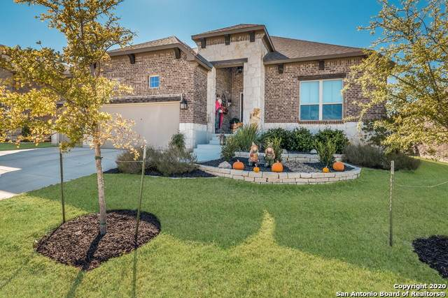 28905 Throssel Lane, San Antonio, TX 78260 (MLS #1492408) :: Alexis Weigand Real Estate Group