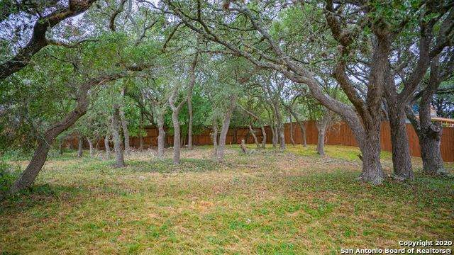 1101 Mendelin Dr, San Antonio, TX 78260 (MLS #1492512) :: The Castillo Group