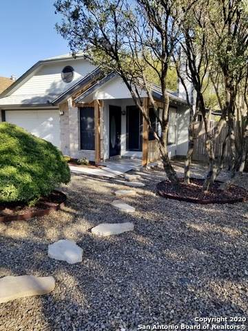 12118 Stoney Ash, San Antonio, TX 78247 (#1493039) :: The Perry Henderson Group at Berkshire Hathaway Texas Realty