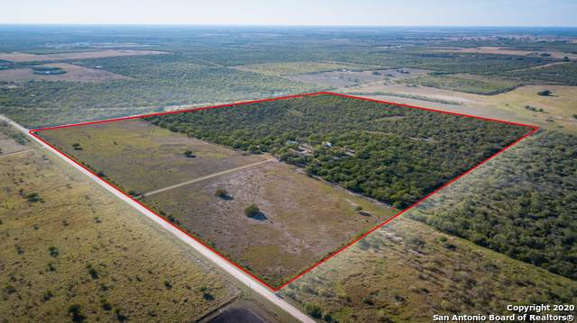 3208 County Road 209, Falls City, TX 78113 (MLS #1493244) :: Carter Fine Homes - Keller Williams Heritage