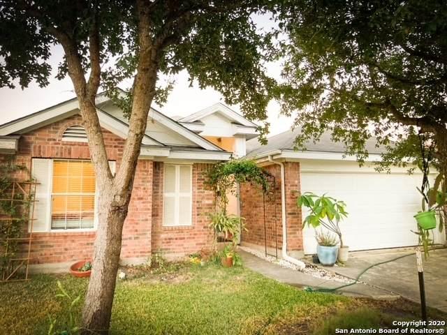 4842 Dahlia Terrace, San Antonio, TX 78218 (MLS #1493248) :: REsource Realty