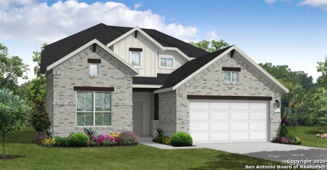 3250 Wild Iris, New Braunfels, TX 78130 (MLS #1493489) :: Concierge Realty of SA