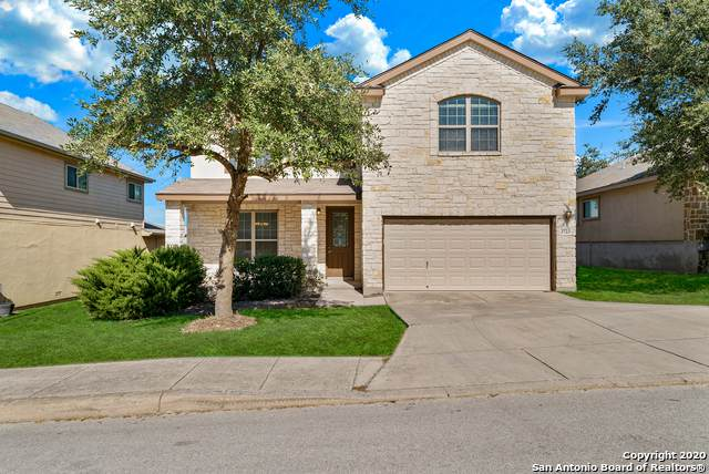 3723 Ox-Eye Daisy, San Antonio, TX 78261 (MLS #1493583) :: Alexis Weigand Real Estate Group