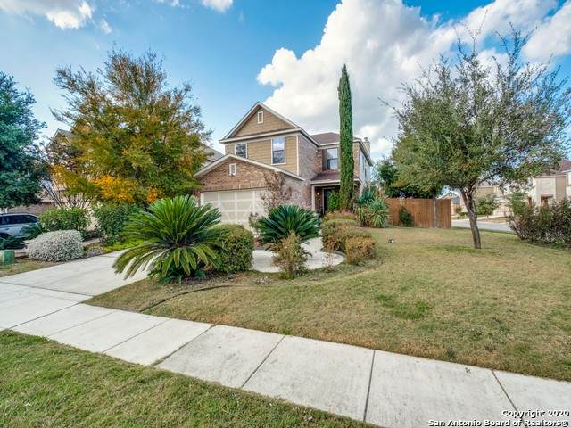 9902 Boxer Crk, San Antonio, TX 78245 (MLS #1493963) :: REsource Realty