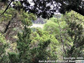 LOT 1392 Robusto, New Braunfels, TX 78132 (MLS #1493966) :: Alexis Weigand Real Estate Group