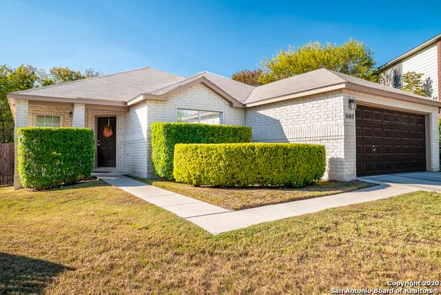 5103 Spring Ash, San Antonio, TX 78247 (MLS #1493972) :: Carolina Garcia Real Estate Group