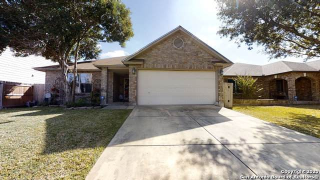 9026 Camino Rey, San Antonio, TX 78245 (MLS #1493984) :: The Glover Homes & Land Group