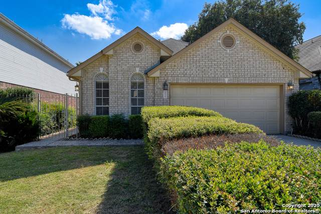 5838 Spring Crossing, San Antonio, TX 78247 (MLS #1494191) :: The Castillo Group