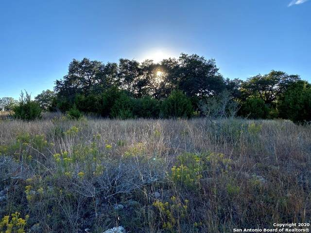 23481 N Cranes Mill Rd, Canyon Lake, TX 78133 (MLS #1494249) :: Neal & Neal Team