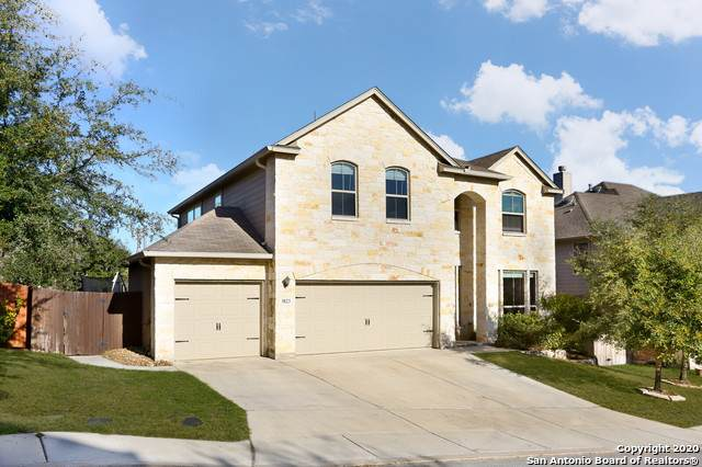 3823 Sweet Olive, San Antonio, TX 78261 (MLS #1494469) :: Alexis Weigand Real Estate Group