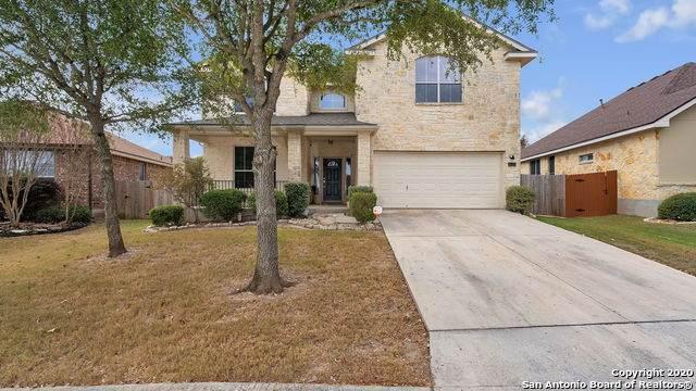 24523 Alamosa Falls, San Antonio, TX 78255 (MLS #1494852) :: The Castillo Group