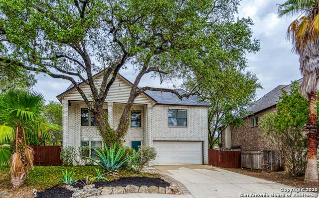 2207 Tworivers Dr, San Antonio, TX 78259 (#1494909) :: The Perry Henderson Group at Berkshire Hathaway Texas Realty