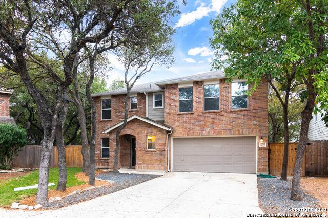 7206 Avator Bay, San Antonio, TX 78250 (MLS #1495038) :: The Castillo Group