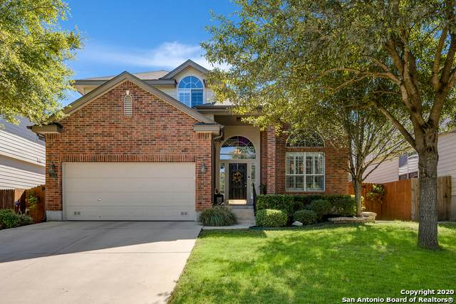 11618 Lemonmint Pkwy, San Antonio, TX 78245 (MLS #1495137) :: The Glover Homes & Land Group