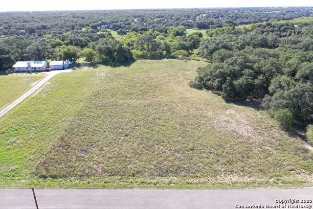246 Shamrock Dr, Floresville, TX 78114 (MLS #1495145) :: The Castillo Group