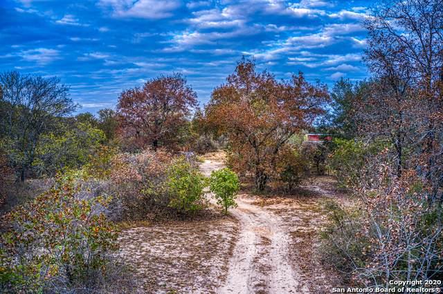 485 Hallmark Path, San Antonio, TX 78264 (#1495189) :: The Perry Henderson Group at Berkshire Hathaway Texas Realty