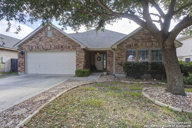 227 Rock Springs Dr, New Braunfels, TX 78130 (MLS #1495254) :: Alexis Weigand Real Estate Group