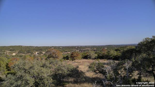 2044 Canyon Curve, Spring Branch, TX 78070 (MLS #1495466) :: Neal & Neal Team