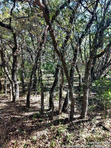 LOT 282 Pr 1739, Mico, TX 78056 (#1495471) :: The Perry Henderson Group at Berkshire Hathaway Texas Realty