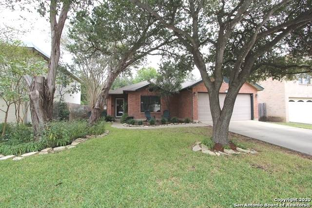 16319 Walnut Creek Dr, San Antonio, TX 78247 (#1495476) :: The Perry Henderson Group at Berkshire Hathaway Texas Realty