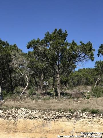 LOT 47 Pr 2775, Mico, TX 78056 (MLS #1495718) :: Alexis Weigand Real Estate Group