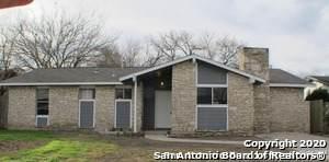 4606 Argonne Dr, San Antonio, TX 78220 (MLS #1495756) :: The Castillo Group