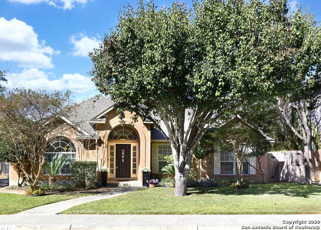 4611 Shavano Birch, San Antonio, TX 78230 (MLS #1495761) :: The Glover Homes & Land Group