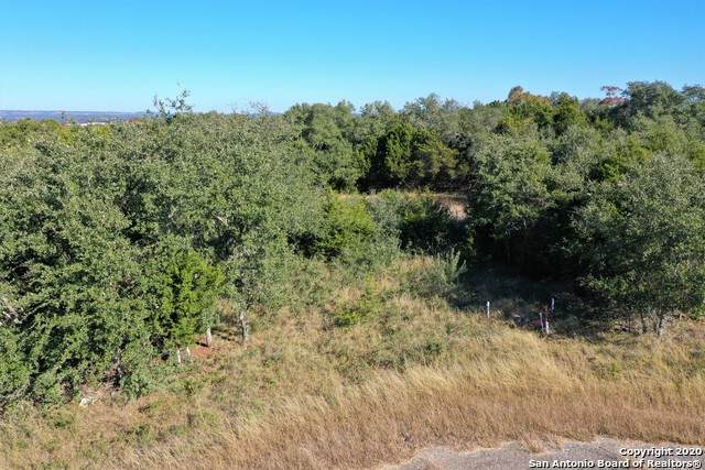 TBD LOT 1086 N Jesse Stiff, Blanco, TX 78606 (MLS #1495799) :: The Glover Homes & Land Group