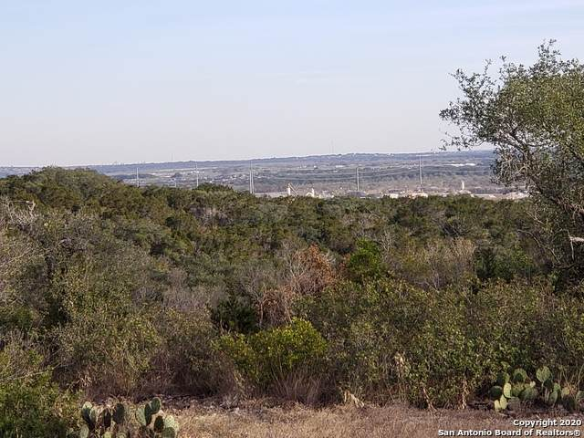 84 Cr 2811, Mico, TX 78056 (MLS #1496050) :: NewHomePrograms.com LLC